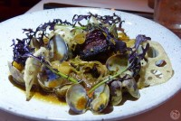 Pork Belly + Clams - Yachtsman Steakhouse