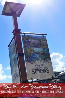 Day 13 - Not Downtown Disney - a day shopping at Disney Springs, with breakfast at Whispering Canyon Cafe, lunch at Wolfgang Puck Express, and dinner at Boma: Flavors of Africa