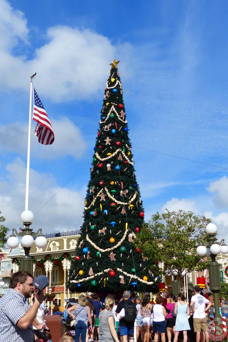 Christmas Tree - Magic Kingdom