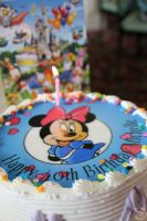 Day 11: Happy Birthday To Me! » My 40th birthday at Magic Kingdom / Lunch at Crystal Palace