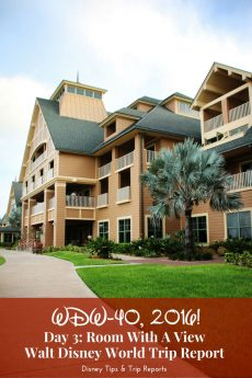 Day 3 - Room With A View - WDW-40, 2016 - Disney's Vero Beach Resort Tour