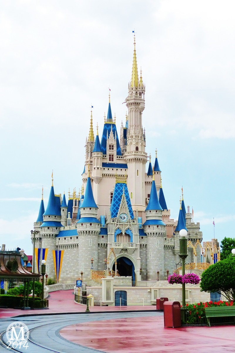 Walt Disney World Trip Reports