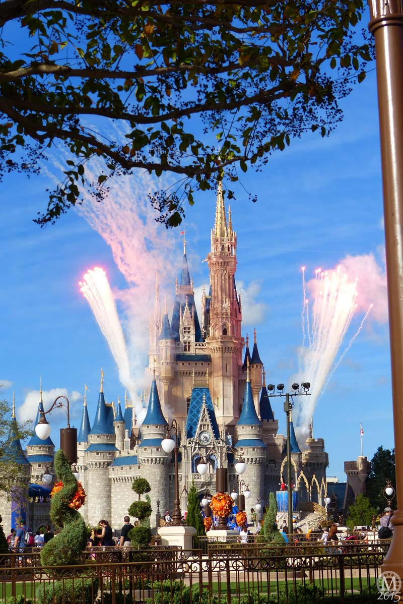 Cinderella Castle - Magic Kingdom