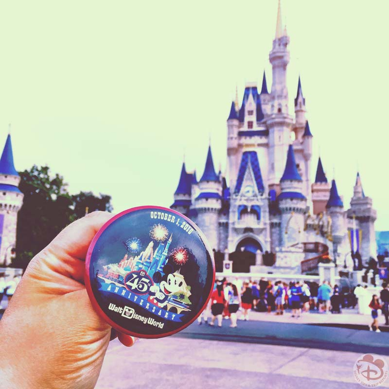 Disney parks around the world disney tips trip reports for Where to go for anniversary trip