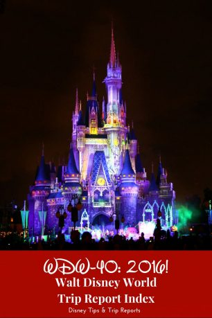WDW-40: 2016 - Walt Disney World Trip Report Index