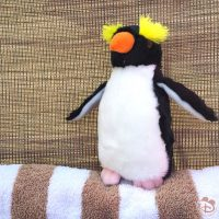 Ricky the Rock Hopper at the Pool