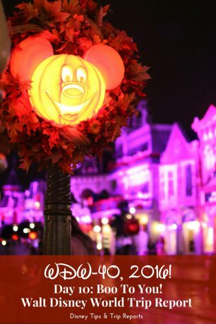 Day 10 - Boo To You! - WDW-40, 2016 - a night at Mickey's Not-So-Scary Halloween Party at Disney's Magic Kingdom
