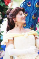 Festival of Fantasy Parade - Magic Kingdom - Belle