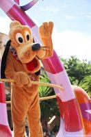 Pluto - - - Festival of Fantasy Parade - Magic Kingdom