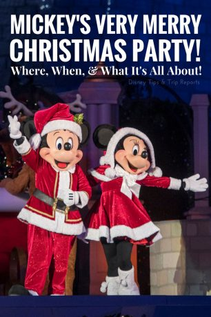 Mickey's Very Merry Christmas Party Info