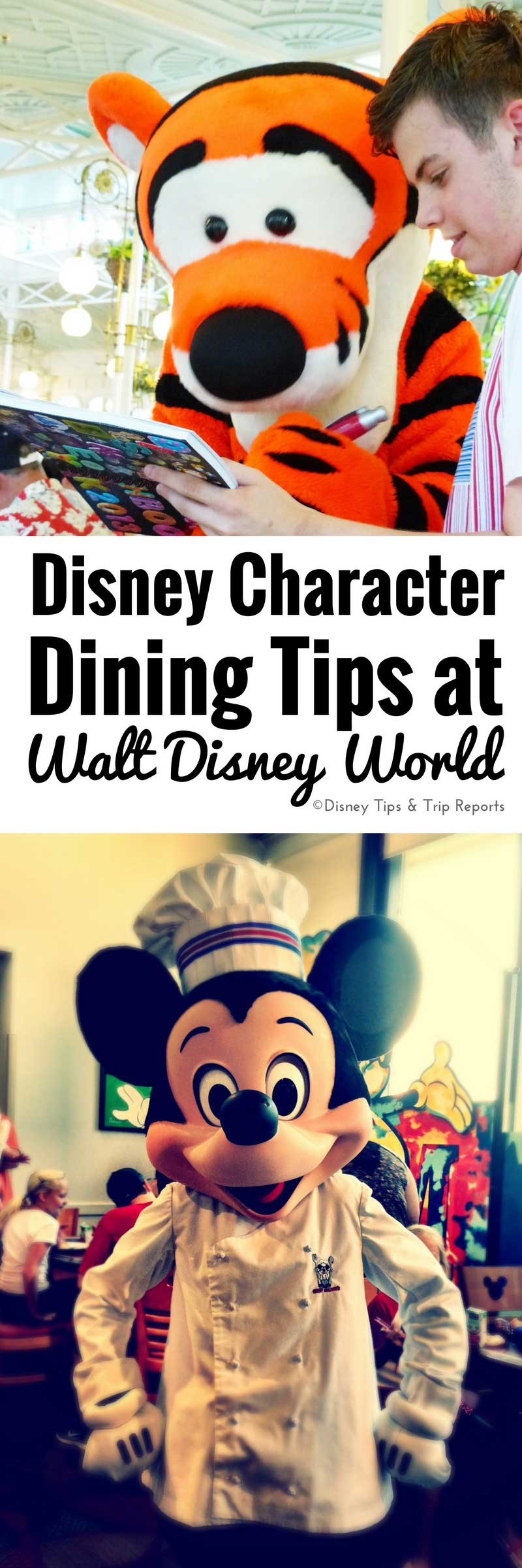 Disney Character Dining Tips Disney Tips Amp Trip Reports