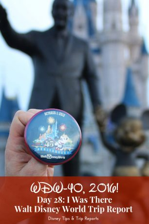 Day 28: I Was There / WDW-40, 2016 - Celebrating the 45th Anniversary of Walt Disney World!