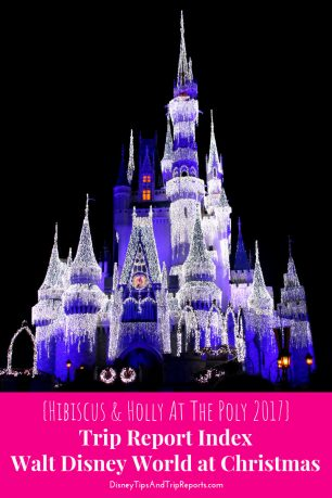 {Hibiscus & Holly At The Poly Disney Trip Report 2017} Disney Trip Report / Walt Disney World at Christmas